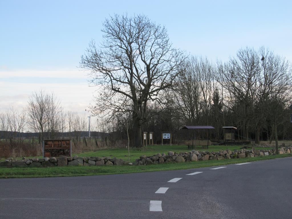 Dorfplatzgestaltung Kassuhn (6)